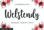 Welstendy - Modern Calligraphy Font