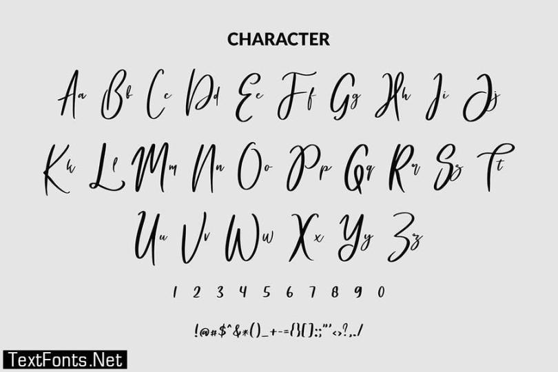Serihilde Modern Script Font