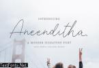 Aneenditha | A Modern Signature Font