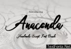 Anaconda Font