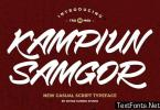 Kampiun Samgor - Casual Display Font