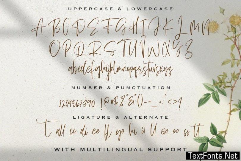 Sellviny Queen - Handwritten Font