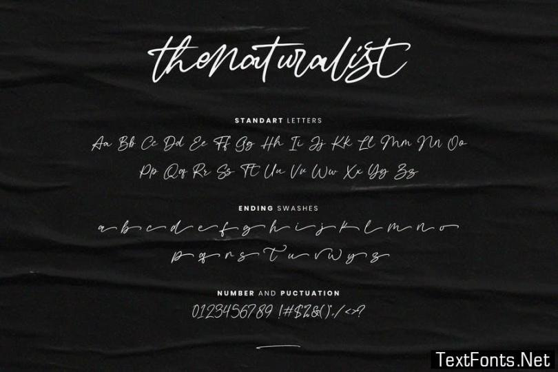 Thenaturalist Caligraphy Wedding Font