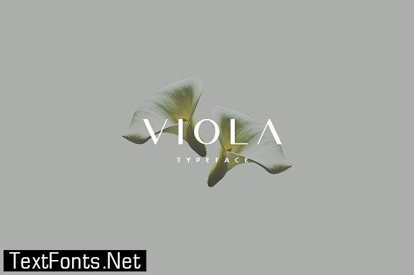 Viola Font