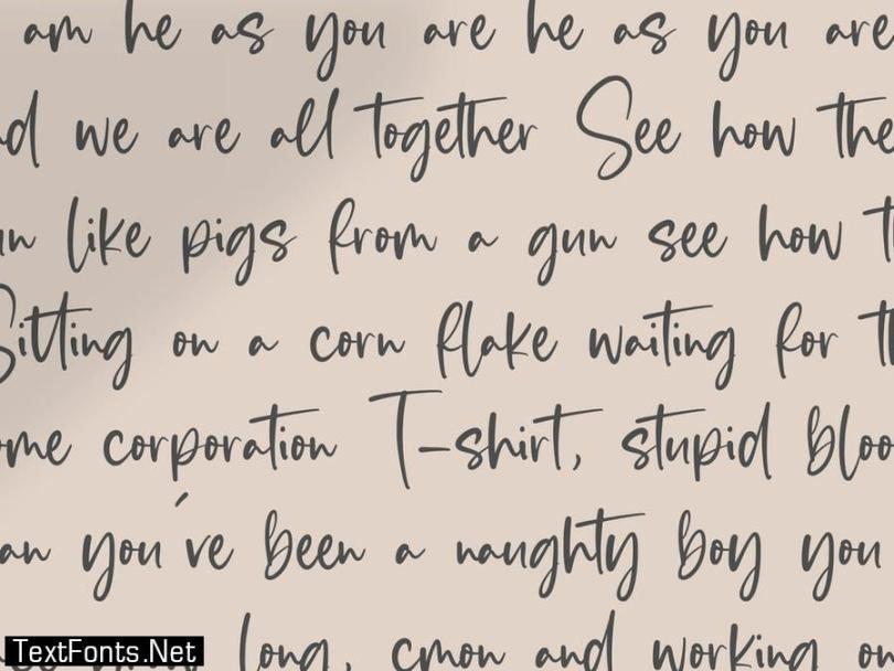 Blankside Script Font YH
