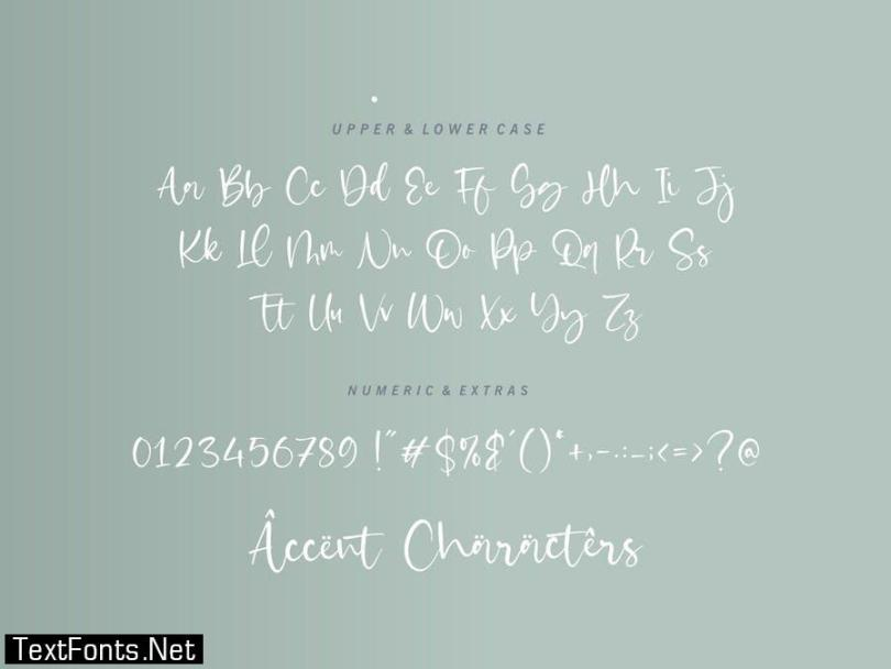 Castilla Script Font YH