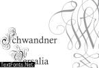 Schwandner Versalia Font