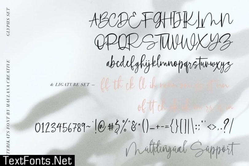 Asterikats Beauty Feminine Script Font