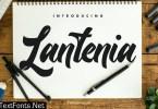 Munich Modern Script Font