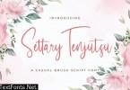 Settary Tenjutsu - Handwritten Font