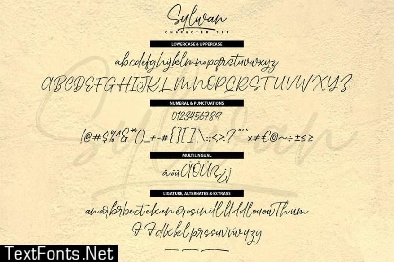 Sylwan   Unique Drybrush Handwriting Script