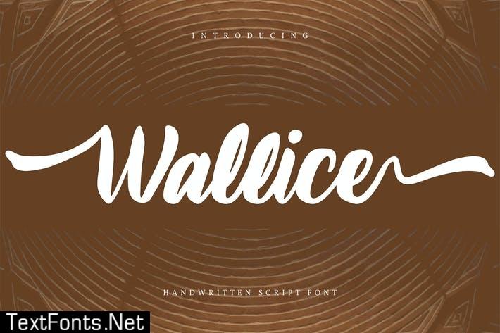 Wallice | Handwritten Script Font
