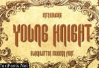 Young Knight Font