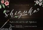 Shizuka Script Font