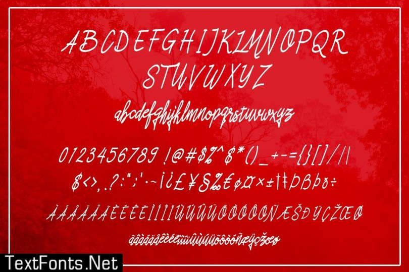 Asfrogas Typeface 483675