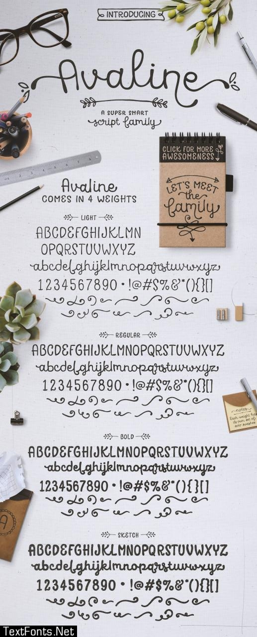 Avaline Script Font 452463