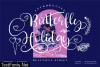 Butterfly Holiday Fontw