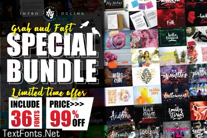 Special Font Bundle
