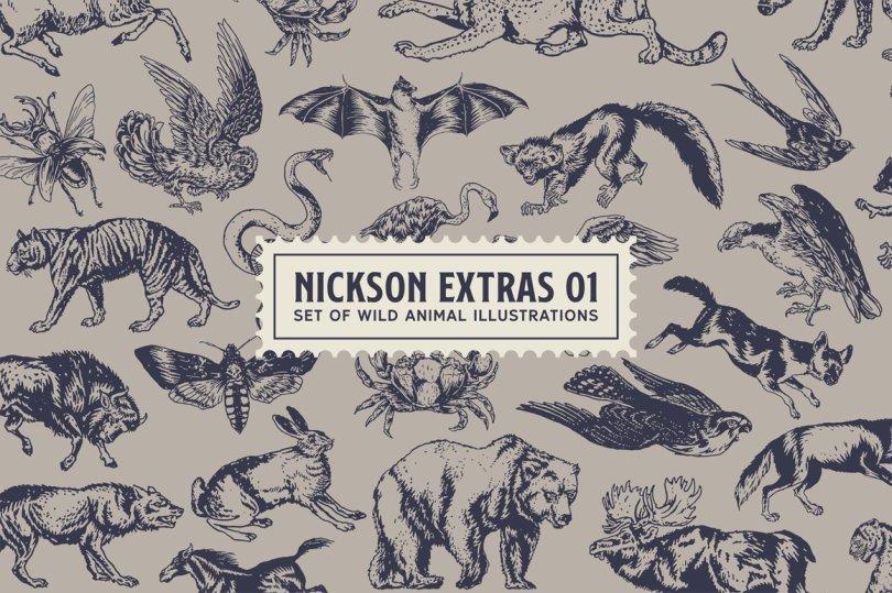 S&S Nickson Font Bundle 1988596