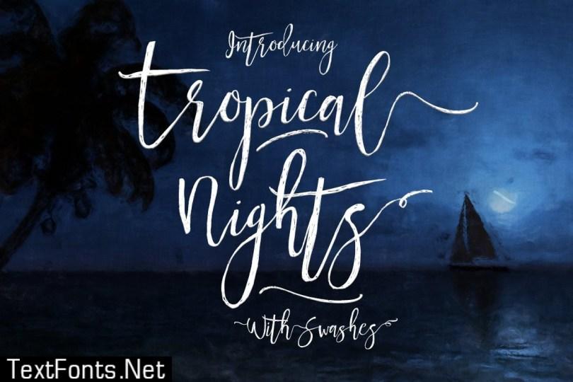 Tropical Nights Script Font 459053