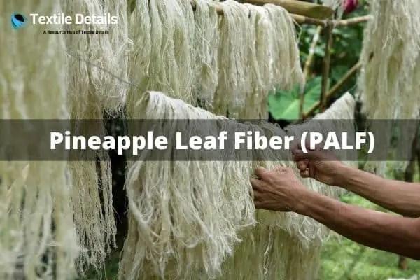 Pineapple Leaf Fiber (PALF)
