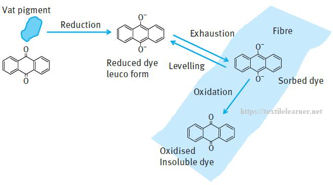 Basic steps in the application of vat dyes
