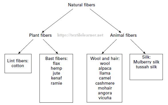 Classification of natural fibers