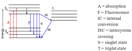 Energy Diagram of Optical Brighteners and Transitions