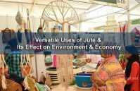 Versatile Uses of Jute and Its Effect on Environment and Economy