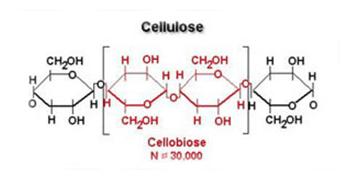 Cellulose structure