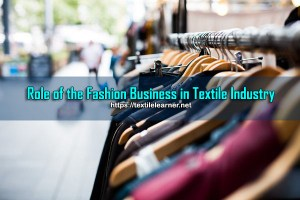 Role of the Fashion Business