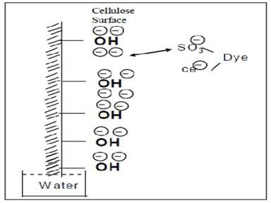 Salt fiber interaction