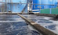 Methods for Wastewater Treatment in Textile Dyeing Industry