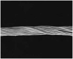 Scanning electron micrograph showing multifilament yarn