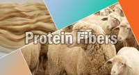 Different Types of Textile Protein Fibers with Properties and Uses