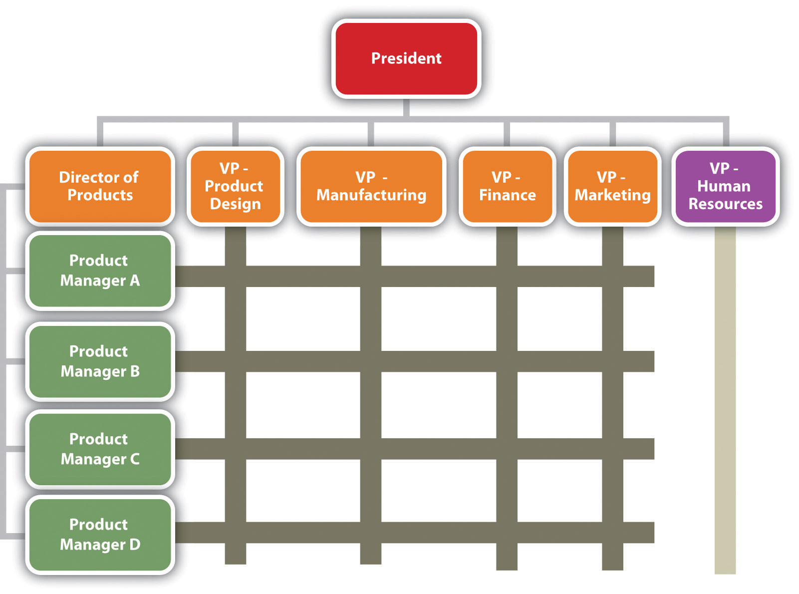 Reading The Organization Chart And Reporting Structure