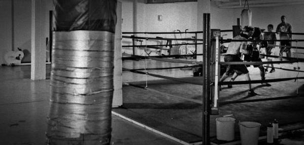 Что выбрать: бокс или тайский бокс? Отличия, правила, плюсы и минусы