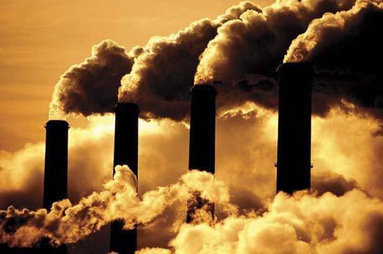 Экологические ресурсы. Экологические проблемы и пути их решения