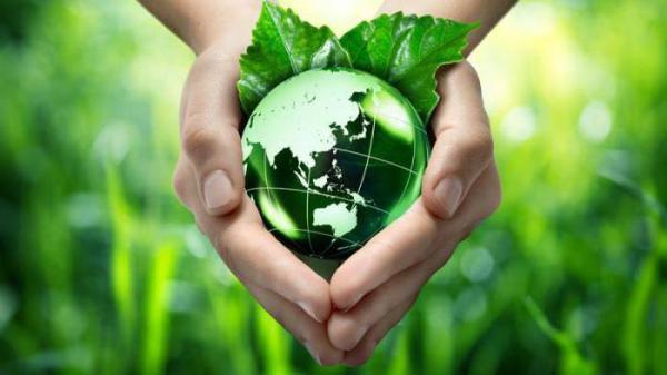 Экологический девиз, речевка, слоган. Экологические лозунги