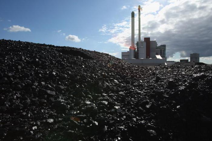 Мусоросжигательный завод: технологический процесс. Мусоросжигательные заводы в Москве и Подмосковье