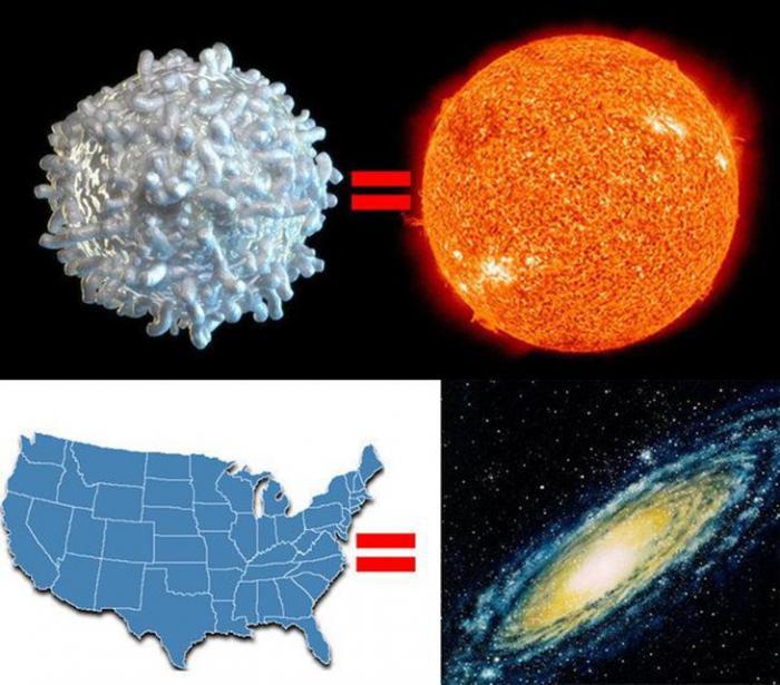 Несколько картинок, заставляющих изменить взгляд на свое существование