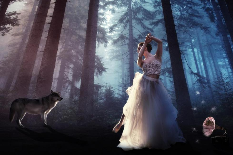 лес сюрреализм волк