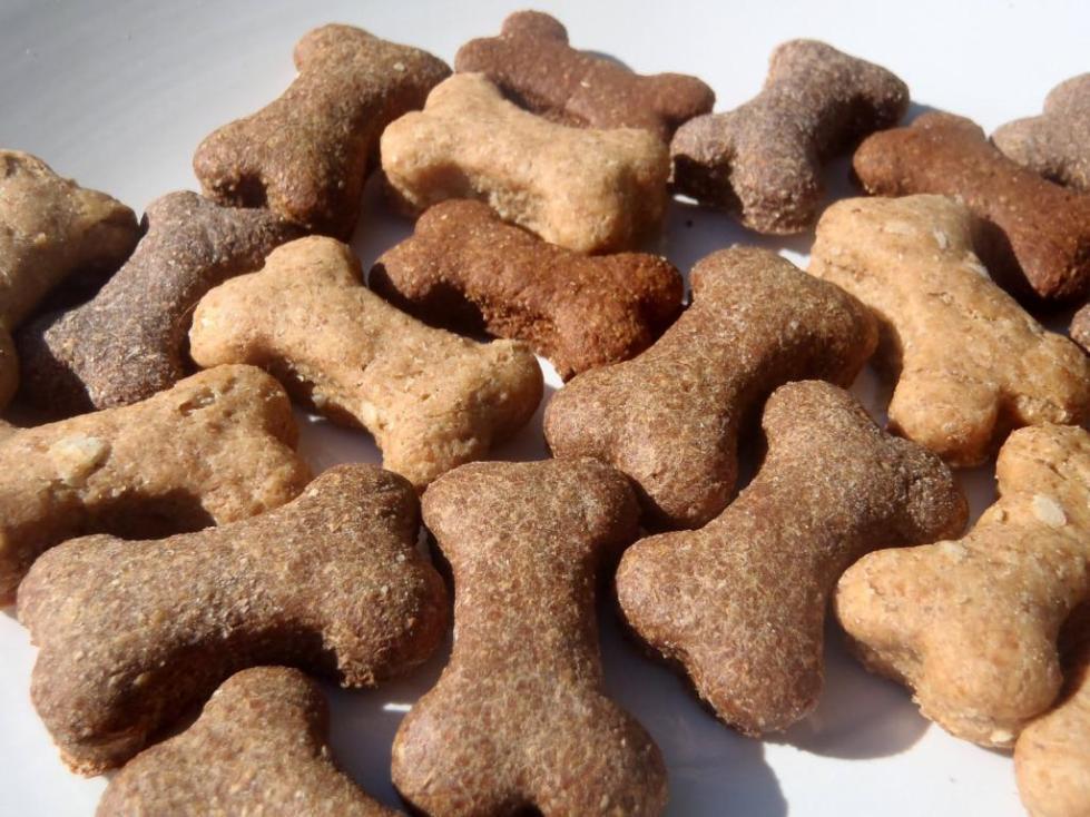 корм для собак органикс отзывы ветеринаров