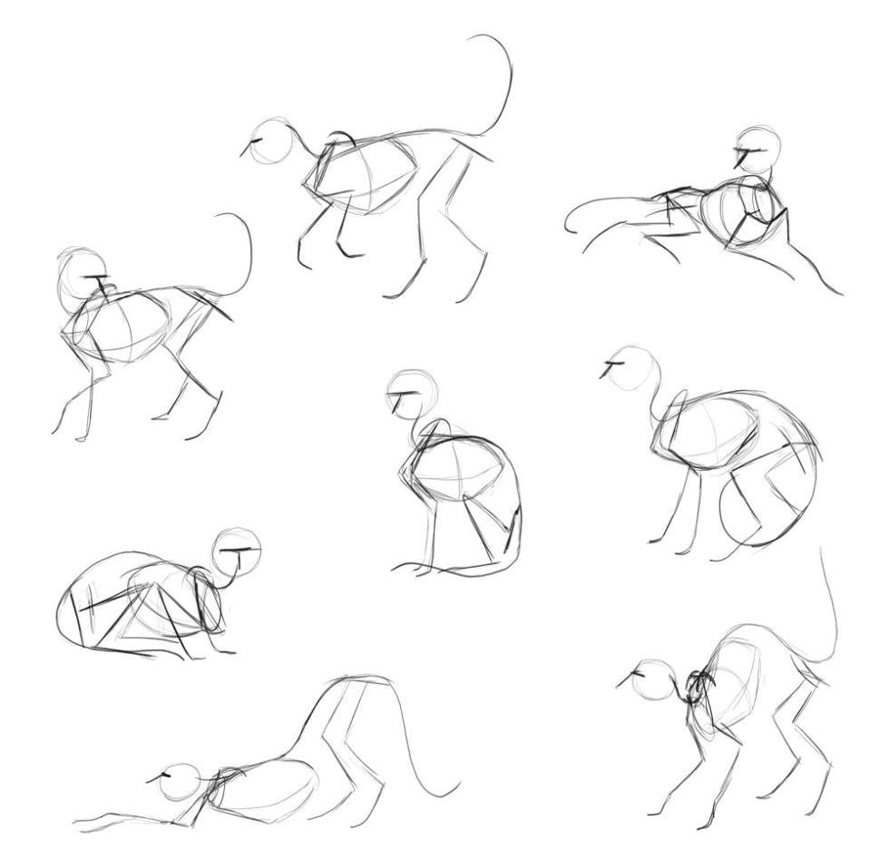 Наброски кошек