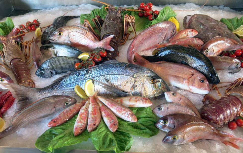 когда и с какой рыбы начать прикорм ребенка