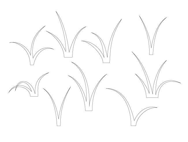 наброски листьев камыша