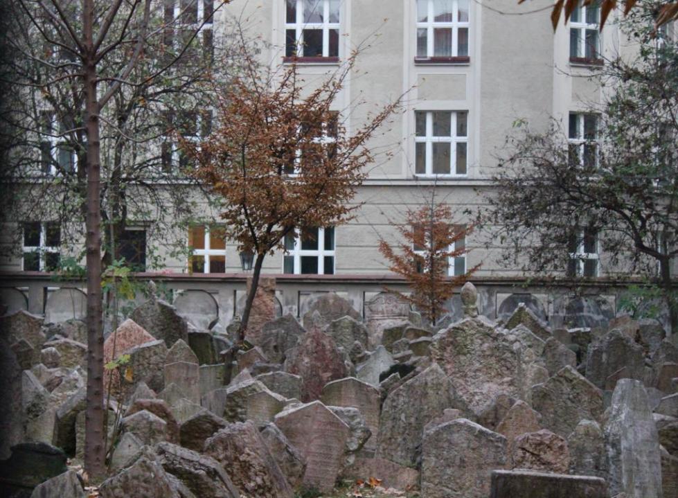 старое еврейское кладбище надгробия