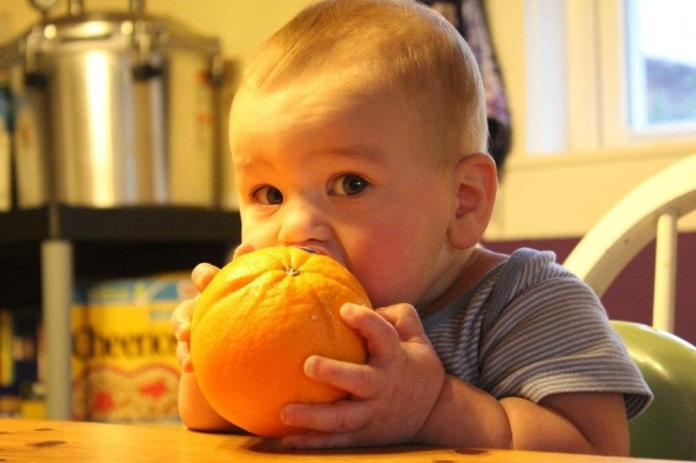 Лимон и апельсин грудничку когда давать