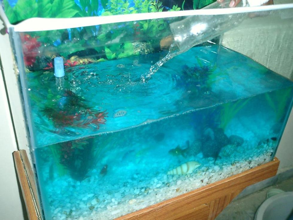 как часто нужно менять воду в аквариуме 100 литров