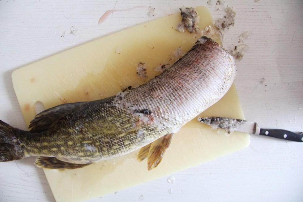 Этапы приготовления щуки с картофелем в духовке